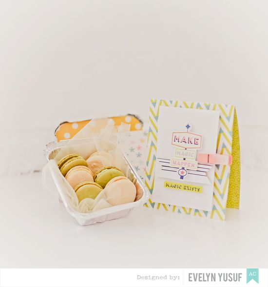 Macaron Tin treat American Crafts by Evelynpy Details  2