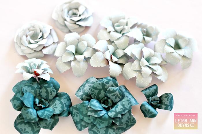 American-crafts-succulents-close-up-photo5
