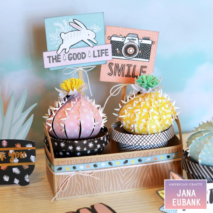 Jana Eubank American Crafts Amy Tangerine Shine On Cactus Home Decor 4 800